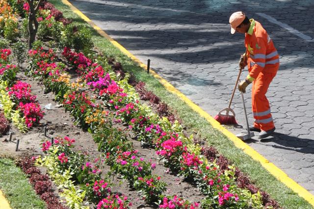 Ayuntamiento y empresarios embellecen jardiner a en for Jardineria queretaro