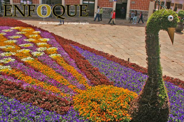 tapete de flores en honor al nombre de atlixco de las flores