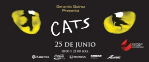 Cats, objeto
