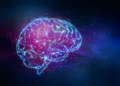 cerebro-ocre