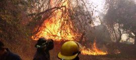 incendio-en-parque-nacional-el-veladero-de-acapulco